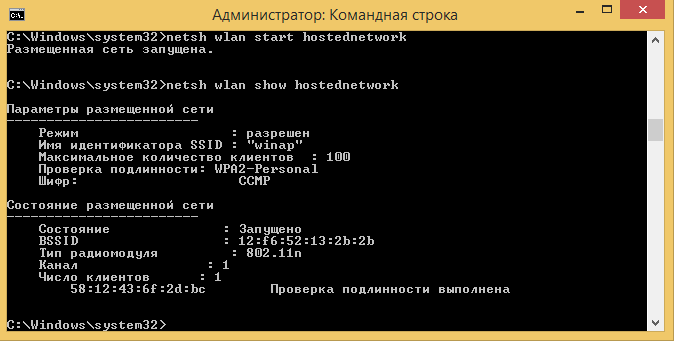 Windows 8.1,  командная строка, команда netsh wlan show hostednetwork